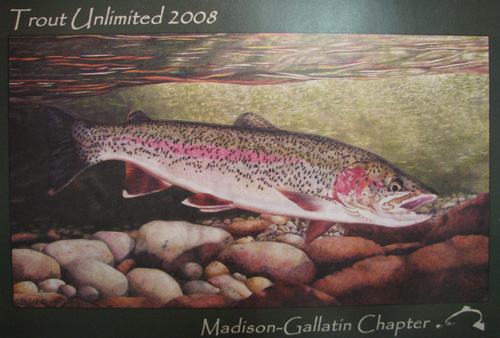 2008 Trout Unlimited Fundraising Poster Created From Sandy's Artwork