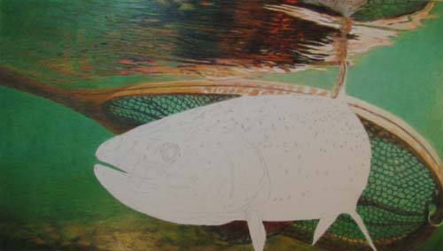 "Sandy's Third Trout Drawing, ""Bob's Fish Net"", Partially Completed"